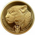 South Africa 1 oz gold BIG FIVE 2020 RHINO PROOF Box + Coa 50 Rand