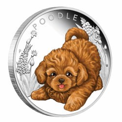 Puppies - Border Collie 2018 1/2oz Silver Proof Coin