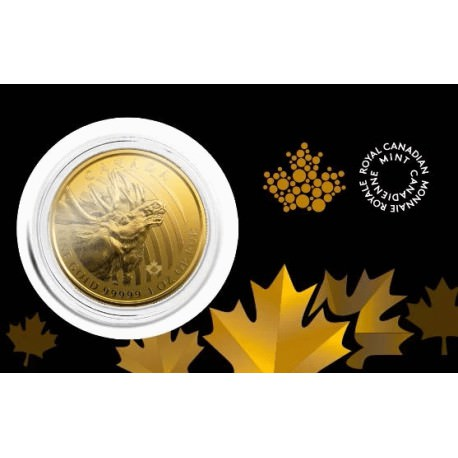 Canada 1 oz gold MOOSE 2019 Call of the Wild